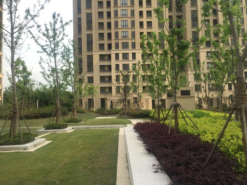 耀华地区16-1、19-1地块公共租赁住房项目